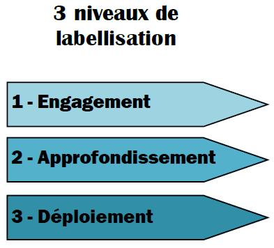 3 niveaux